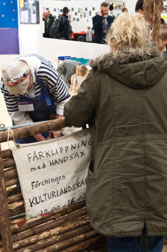 Husdjursmässan 2014 i Kista