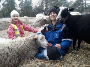 Två flickor och tre får tillsammans i hagen